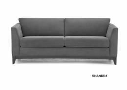 Shandra